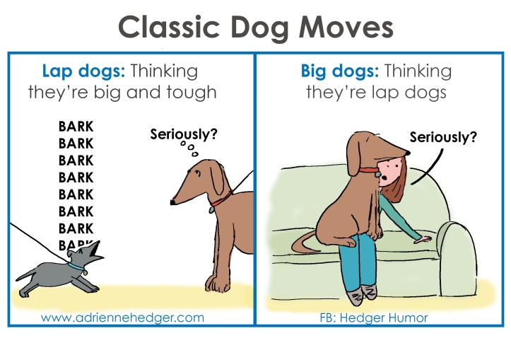 classic dog moves