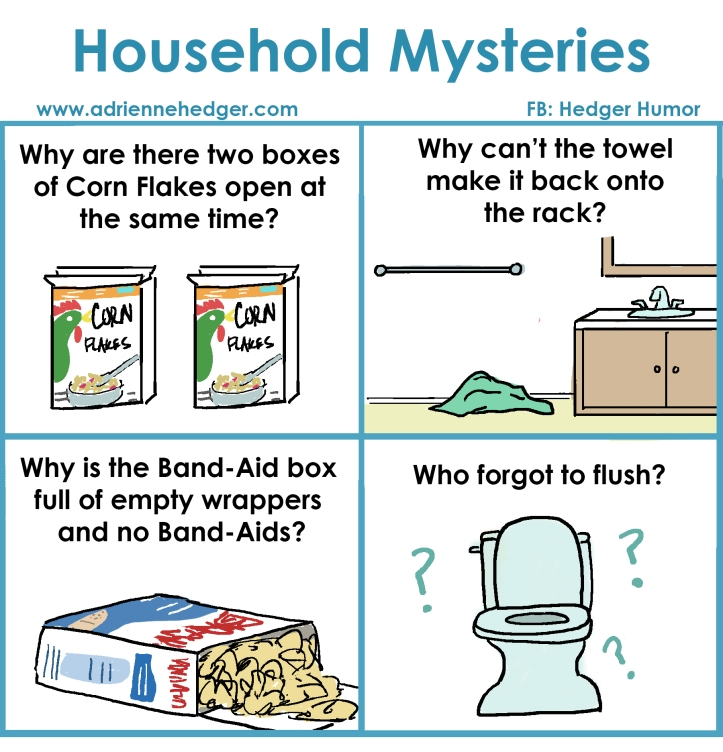 Household Mysteries
